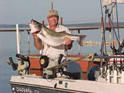 Striper Quest Fishng Guide Service - Aaron Thompson